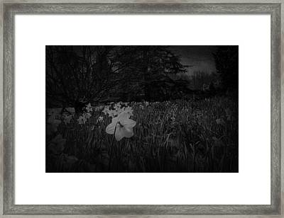 Framed Print featuring the photograph Standing Proud by Ryan Photography