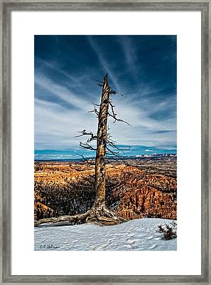 Standing Regardless Framed Print by Christopher Holmes