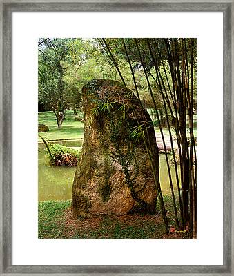 Framed Print featuring the photograph Standing Stone With Fern And Bamboo 19a by Gerry Gantt