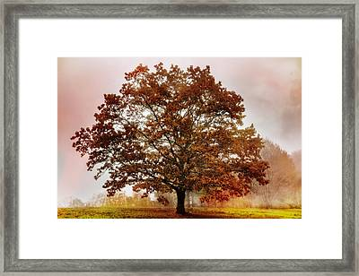Standing Tall Framed Print by Debra and Dave Vanderlaan