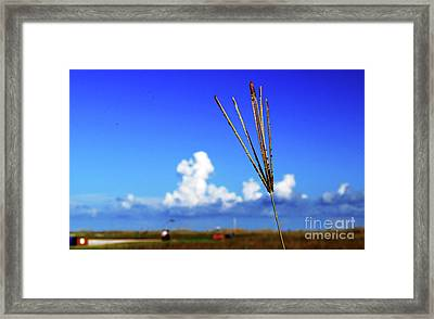 Framed Print featuring the photograph Standing Tall by Gary Wonning