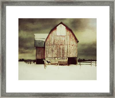 Framed Print featuring the photograph Standing Tall by Julie Hamilton
