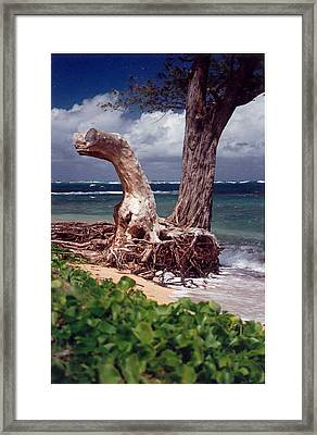 Framed Print featuring the photograph Standing Tall by Lori Mellen-Pagliaro