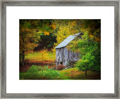 Standing The Test Of Time  Framed Print