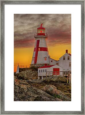 Standing Watch On Bay Of Fundy Framed Print by Lee Kappel