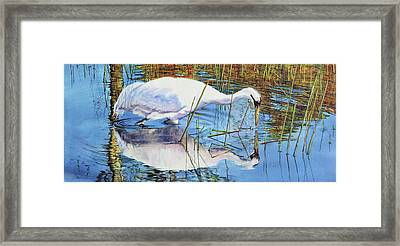 Standing Water Framed Print by Vicky Lilla