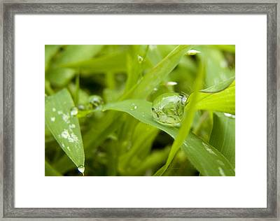 Standstill Drop Framed Print