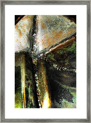 Stanic Starfish Framed Print by Scott Wyatt