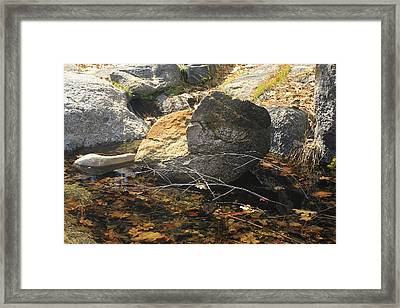 Framed Print featuring the photograph Stanislaus Rocks Spring by Larry Darnell