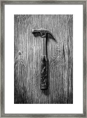 Stanley Hammer Framed Print