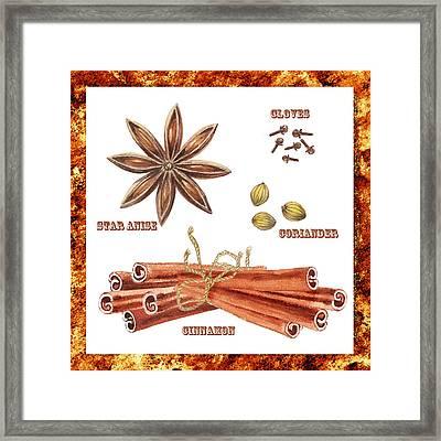 Star Anise Cloves Coriander Cinnamon Framed Print