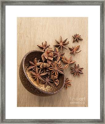 Star Anise Pods Framed Print