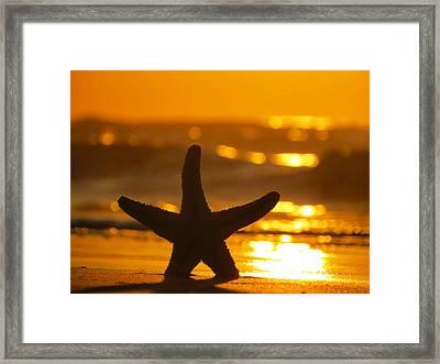 Star Bokeh Framed Print