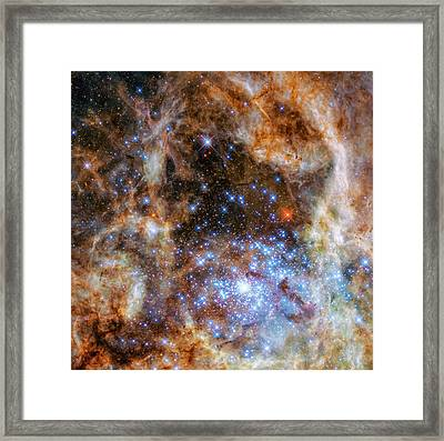 Framed Print featuring the photograph Star Cluster R136 by Marco Oliveira