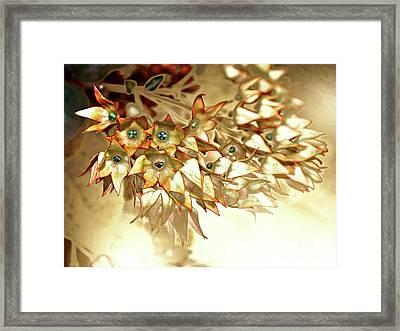 Star Fade Autumn Framed Print
