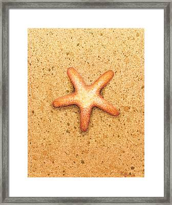 Star Fish Framed Print by Katherine Young-Beck