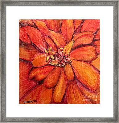 Star Flower Framed Print by Vonda Lawson-Rosa