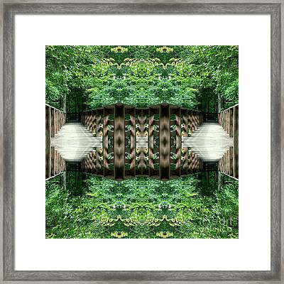 Star Gate Deep Forest  Framed Print by Scott D Van Osdol