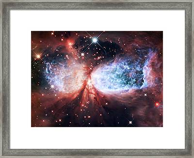 Star Gazer Framed Print by Jennifer Rondinelli Reilly - Fine Art Photography