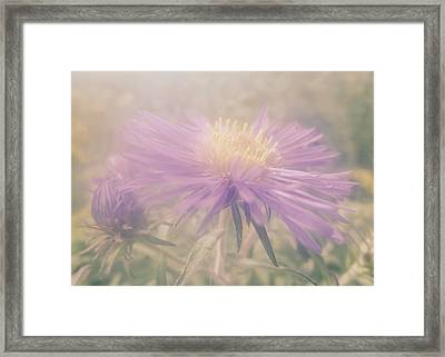 Star Mist Framed Print by Tim Good