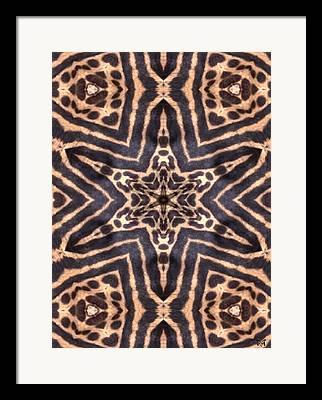 Magissimo Framed Prints
