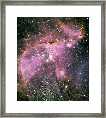 Star Shower Framed Print by Jennifer Rondinelli Reilly - Fine Art Photography