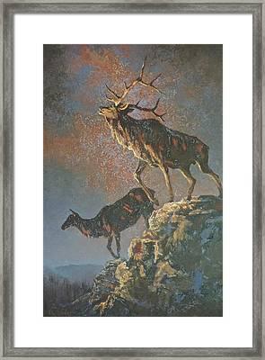 Star Spangled Bugle Framed Print