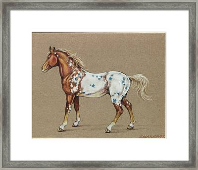 Star Spangled Horse Framed Print by Eden Alvernaz