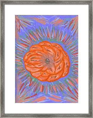 Starburst Framed Print by Laura Lillo