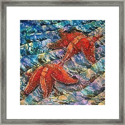 Starfish 1 Framed Print by Sue Duda