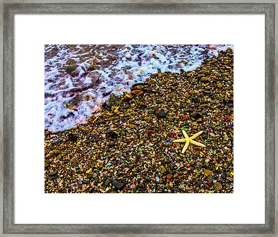 Starfish Among Stones And Sea Glass Framed Print