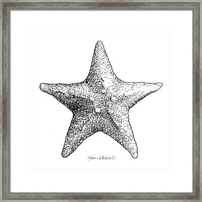 Starfish Drawing Black And White Sea Star Framed Print by Karen Whitworth