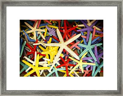 Starfish Dressed Up Framed Print by Marilyn Hunt