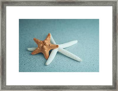Starfish On Aqua Framed Print by Tom Mc Nemar