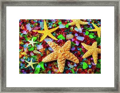 Starfish On Sea Glass Framed Print by Garry Gay