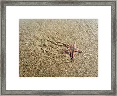 Starfish On The Beach Framed Print by Debra Martz