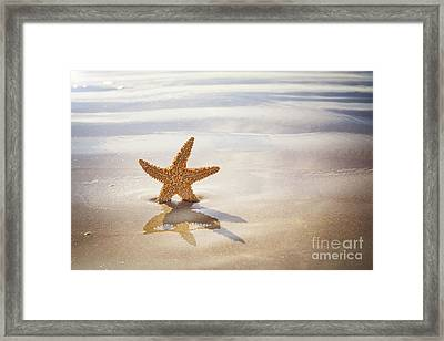 Starfish On The Beach Framed Print by Jane Rix