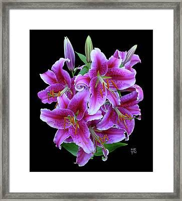 Stargazer Lily Cutout Framed Print