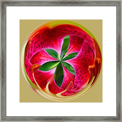 Framed Print featuring the photograph Stargazer Lily Orb by Bill Barber