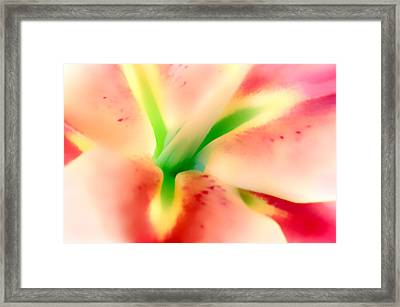 Stargazer Seduction Framed Print