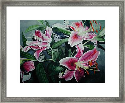 Stargazers Framed Print by Dwight Williams