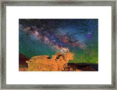 Stargazing Bull Framed Print