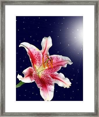Stargazing Framed Print by Kristin Elmquist