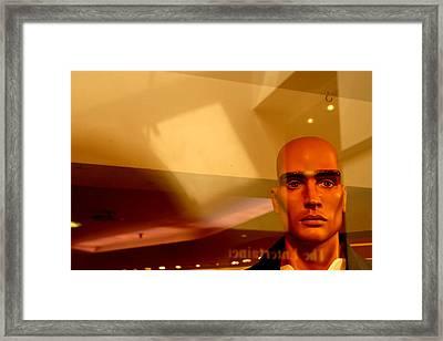 Staring Away Dom Framed Print by Jez C Self