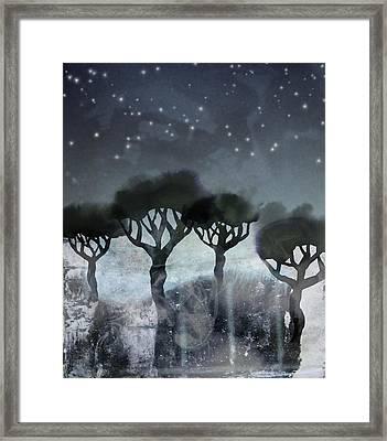 Starlit Marsh Framed Print by Varpu Kronholm