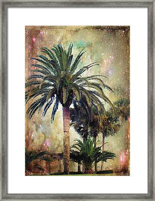 Starry Evening In St. Augustine Framed Print