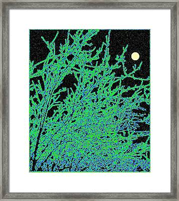 Starry Moonlit Night Framed Print by Will Borden