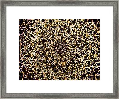 Starry Night Framed Print by Jake Hartz