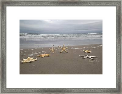 Stars Among Us Framed Print
