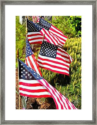 Stars And Stripes Framed Print by Janine Riley
